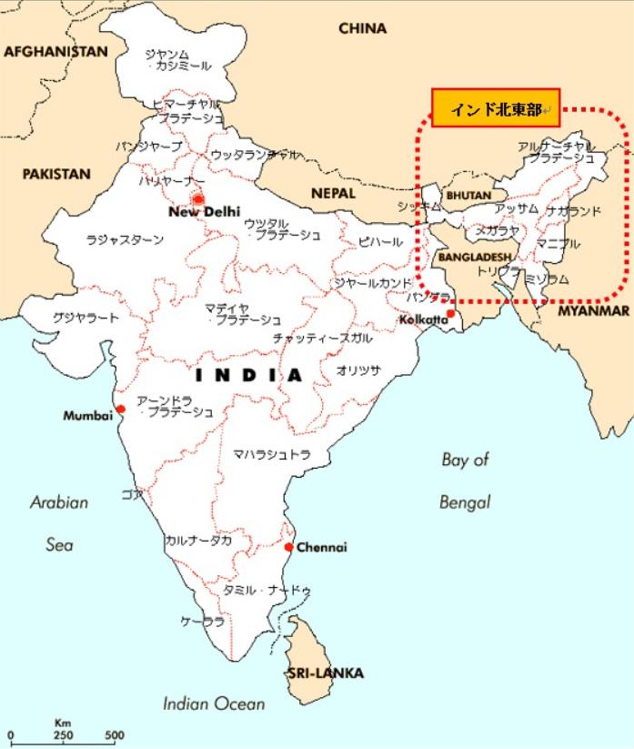 インド北東部のデモ