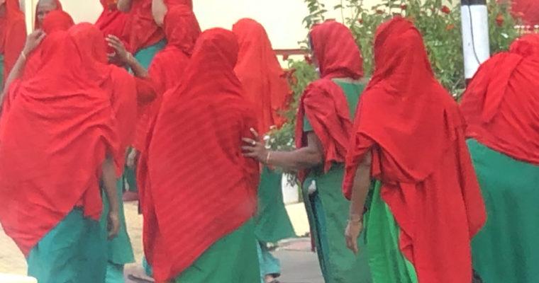 バングラデシュカラーの衣装を身にまとった謎の女性グループが出現!