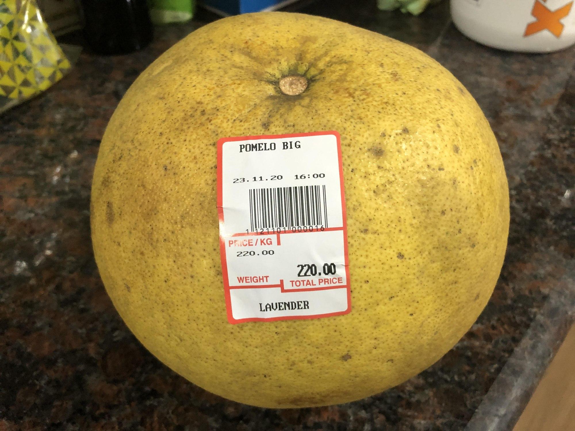 恐竜の卵のような超巨大果物、その名もブンタン!!